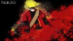 Naruto 6048