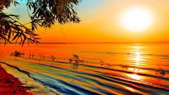 Orange Sunset 30011