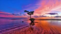 Pink Sunset Wallpaper 30023