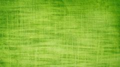 Plain Green Backgrounds 19126