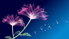 Purple Flowers 14033
