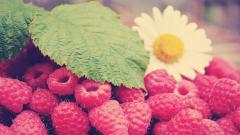 Raspberries 29087