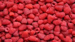 Raspberries Background 29085