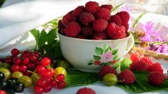 Raspberry Pictures 29078