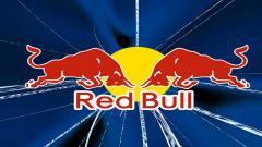 Red Bull 17893