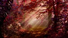 Red Forest HD 33532