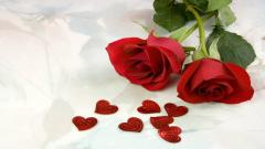 Rose Flowers 7070