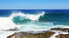 Sea Wave Wallpaper 31023