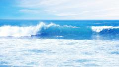 Sea Waves 31010