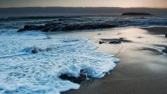 Sea Waves 31018