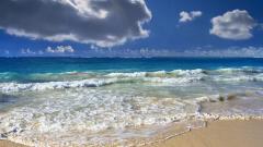 Sea Waves 31026