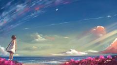 Sky 13061