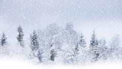 Snow Background 17158