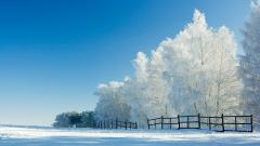 Snow Landscape Background 17153