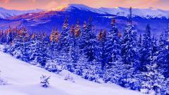 Snow Mountain 16543