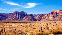 Stunning Desert Wallpaper 16491