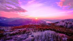 Stunning Purple Sunset 23190