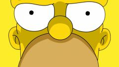 The Simpsons 23011