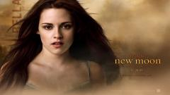 Twilight Wallpaper 4728