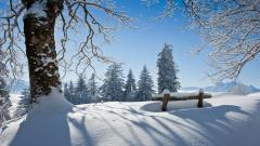 Winter Scenery HD Wallpaper 18719
