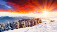 Winter Scenery Sunlight Wallpaper 33762