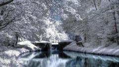 Winter Scenery Pictures 33759