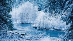 Winter Wallpaper 17504