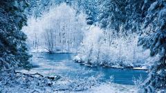 Winter Wallpaper 17504