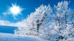 Winter Wallpaper 17511