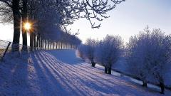 Winter Wallpaper 17512