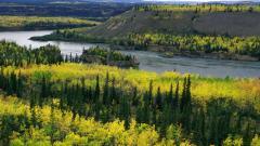 Yukon 37496