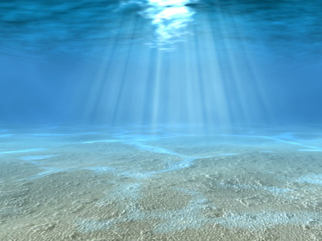 underwater wallpaper 7113