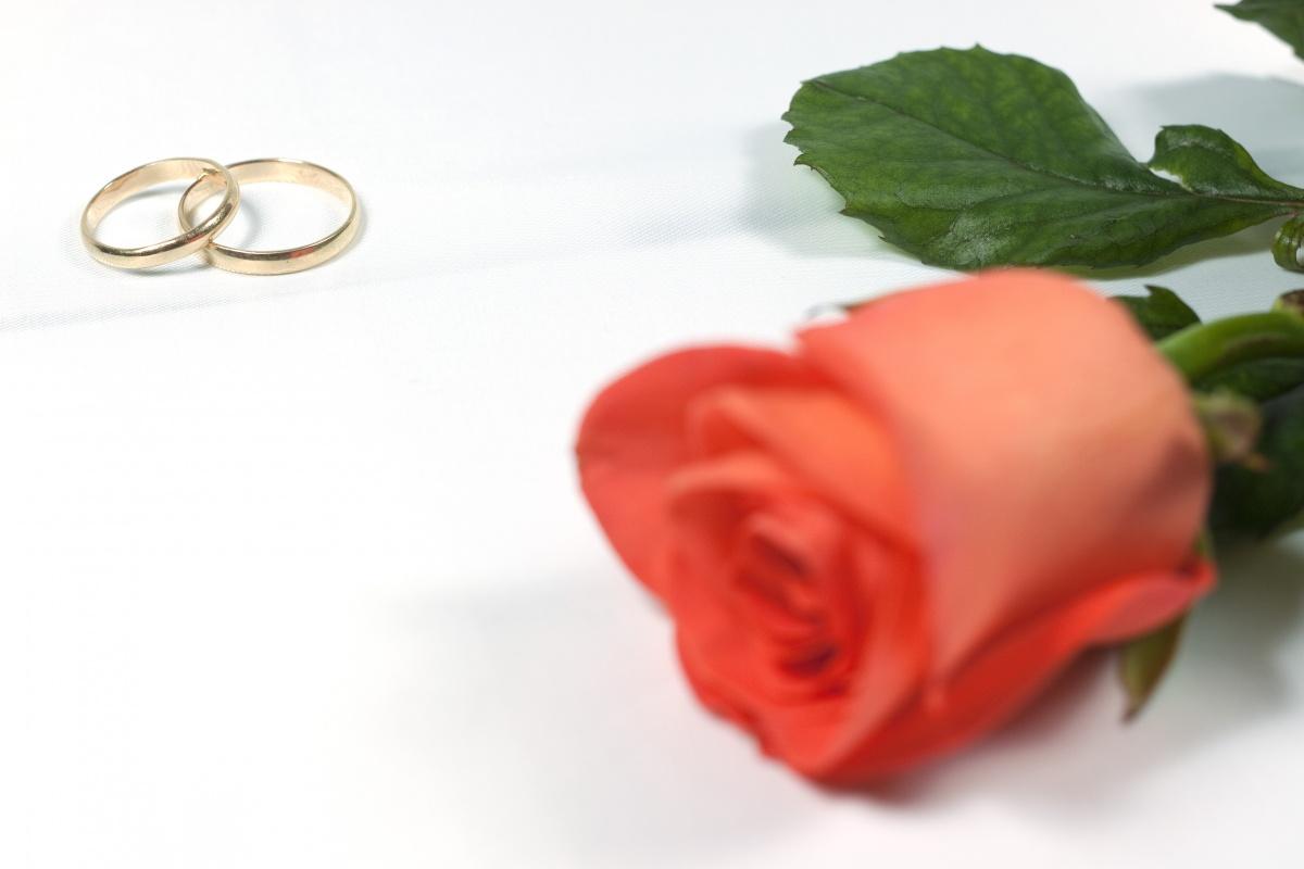 wedding background 18430