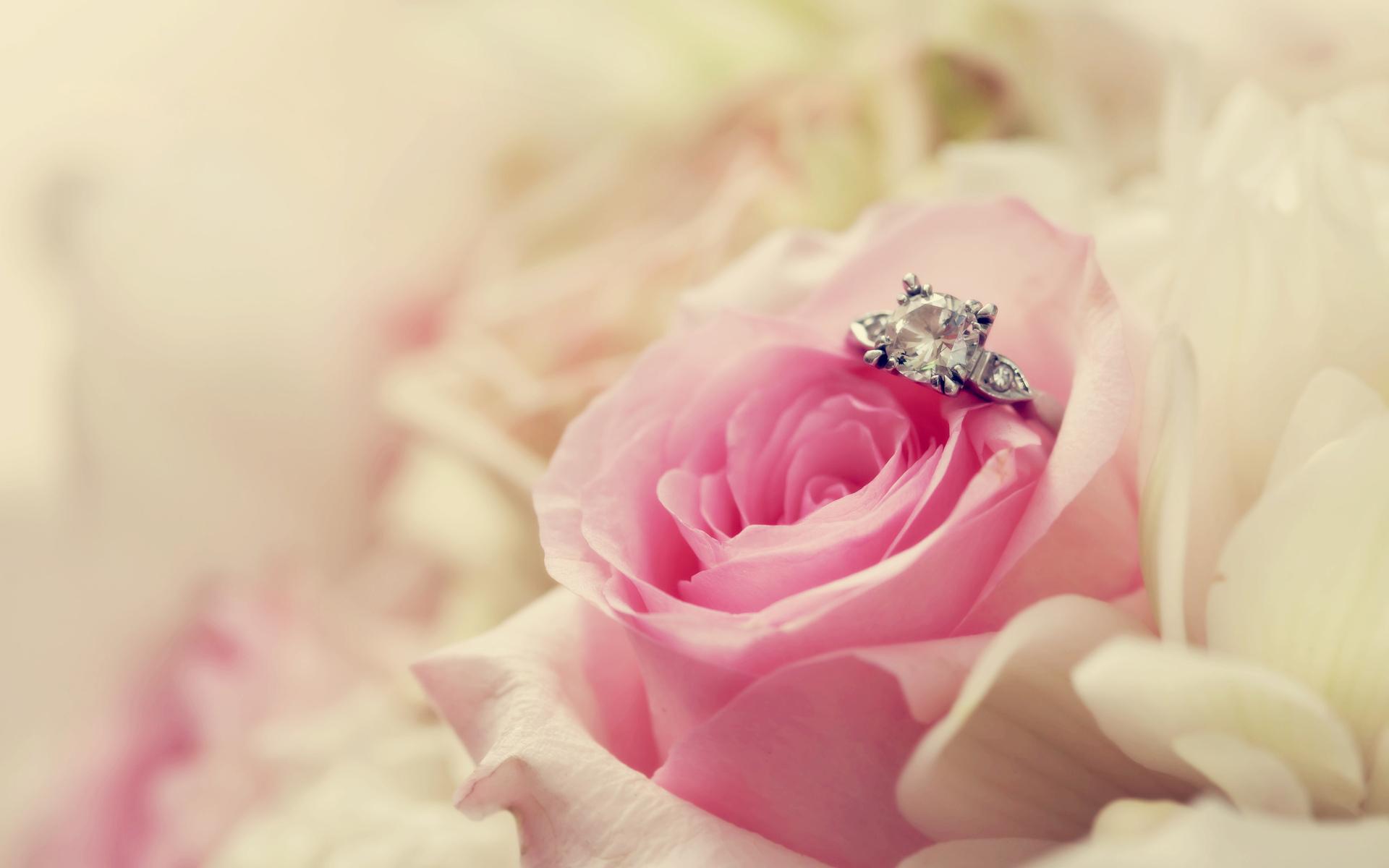 wedding pictures 26814