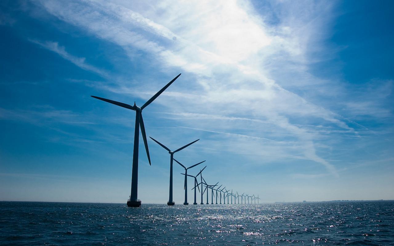 wind 29102