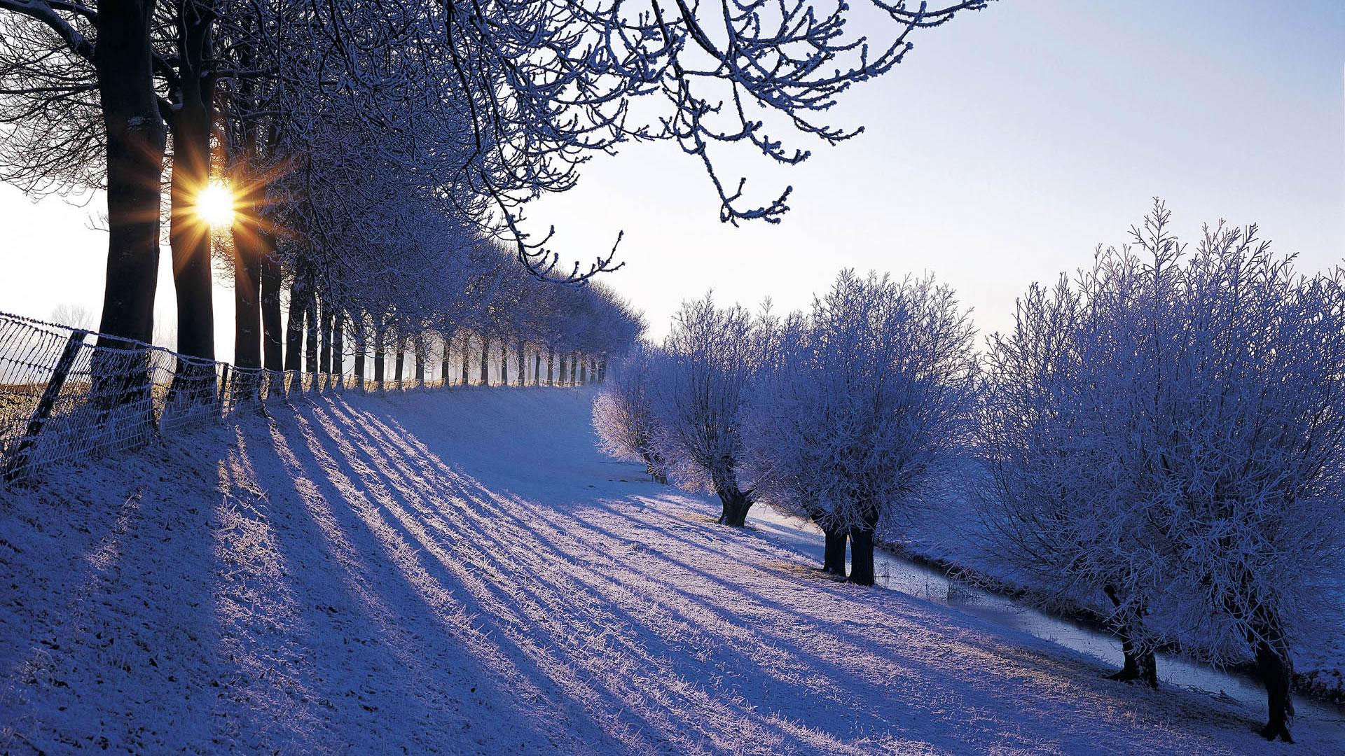 winter wallpaper 17512