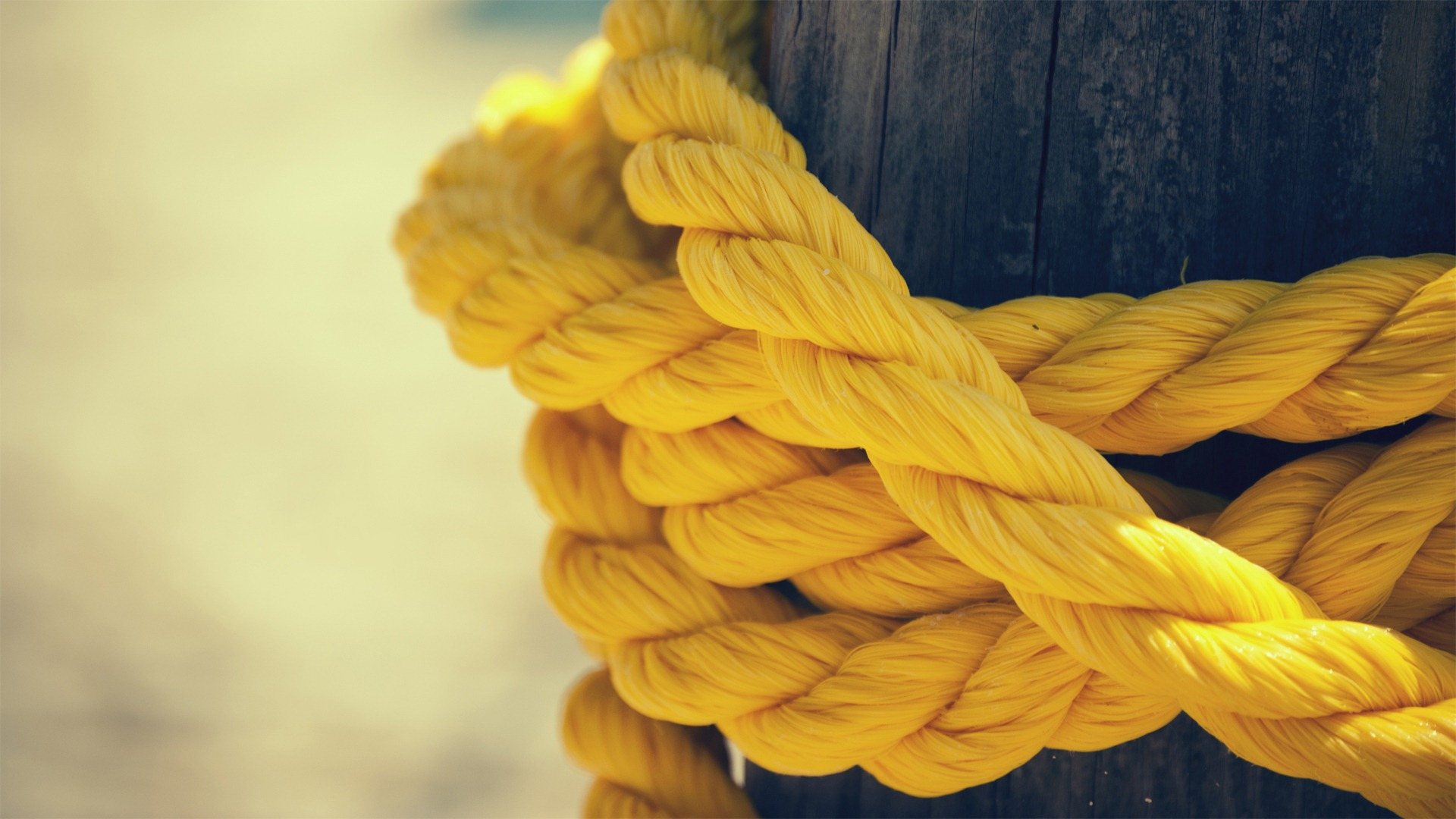yellow rope 27751