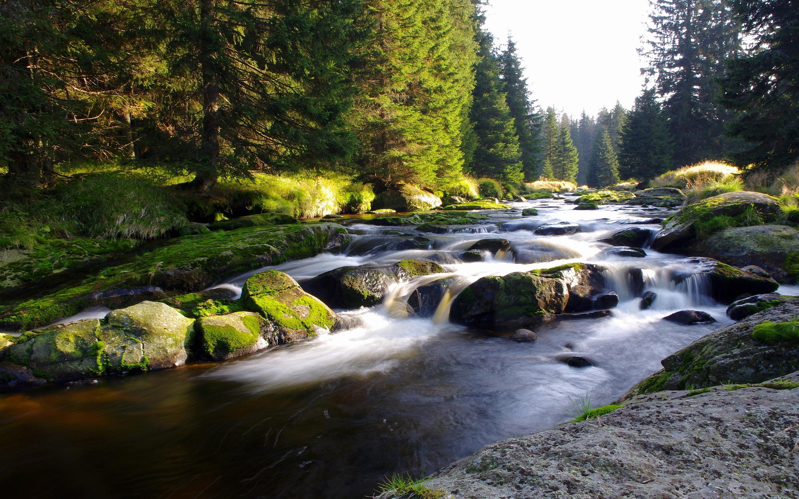 amazing mountain stream wallpaper 33682