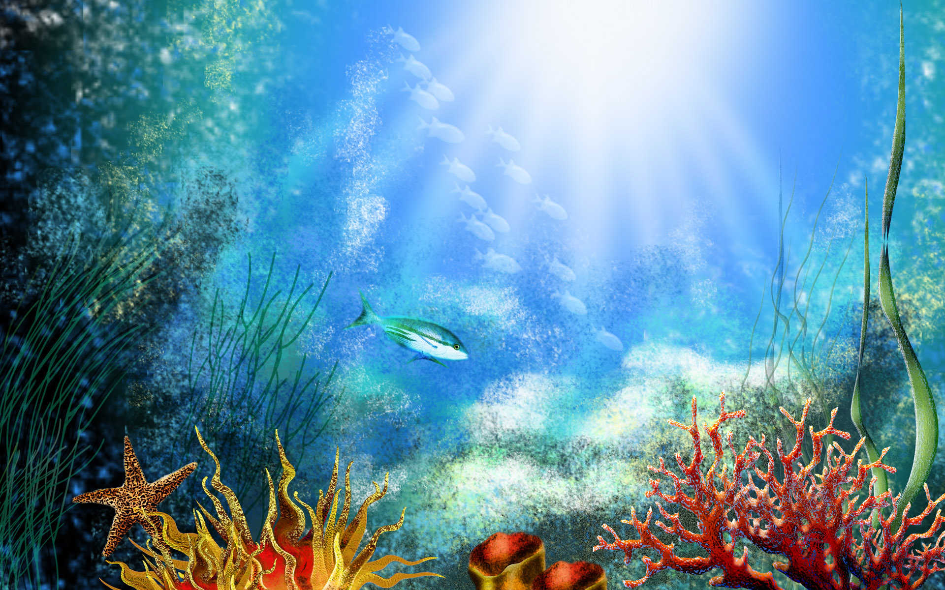 aquarium backgrounds 19001