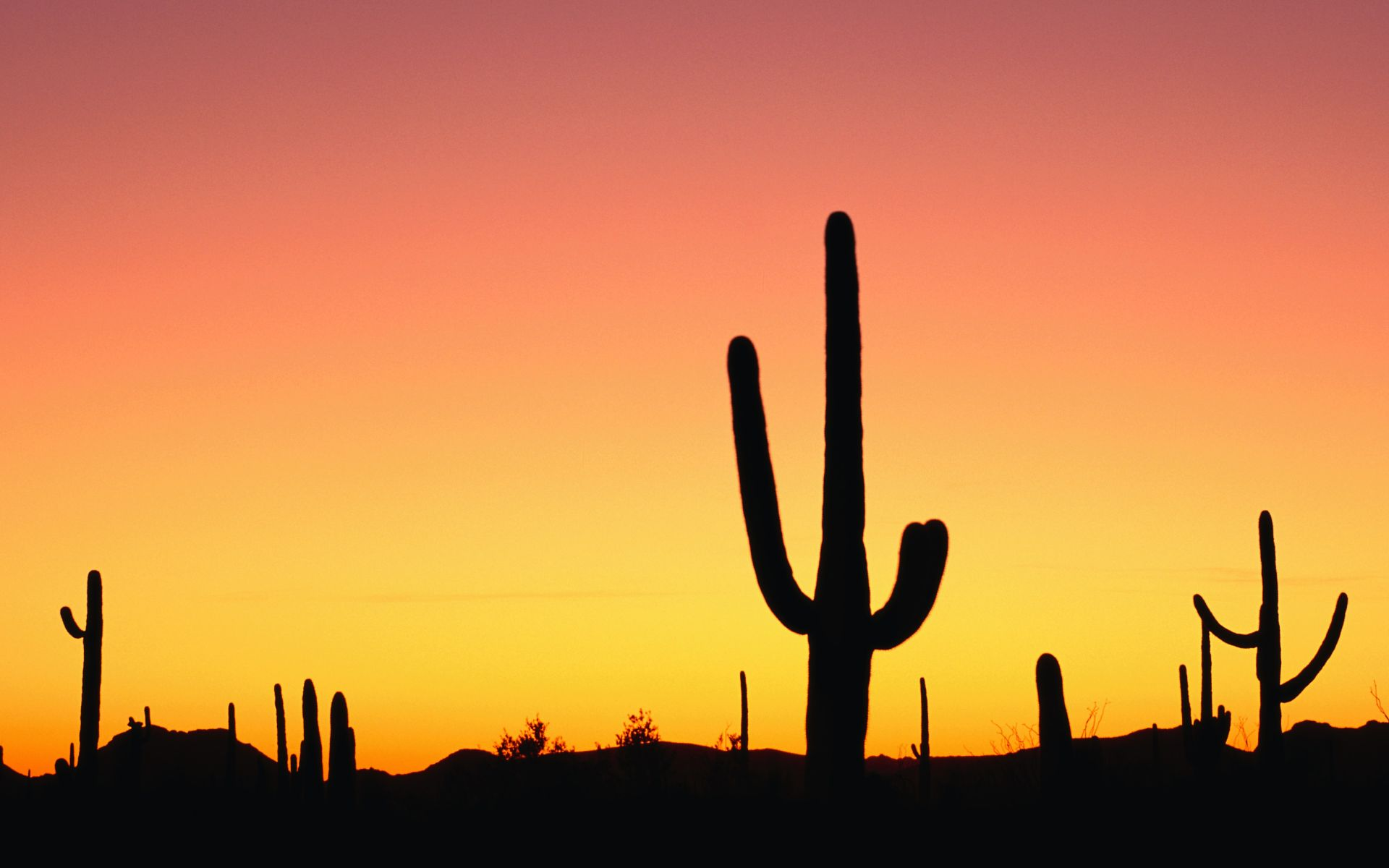 arizona sunset wallpaper 30130