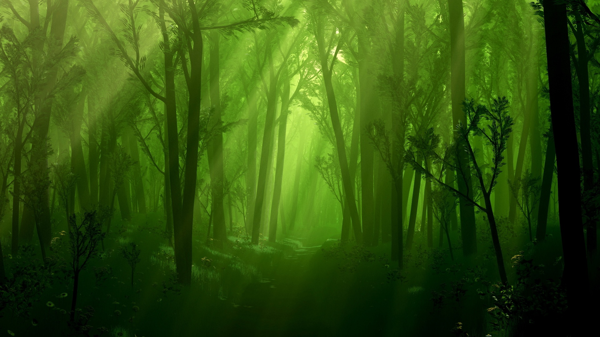 awesome dark forest wallpaper 35743