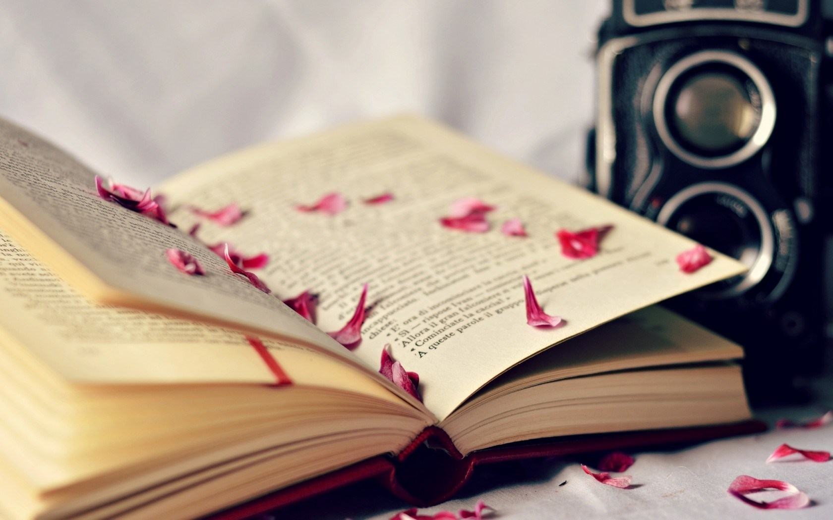beautiful book pages wallpaper 43888