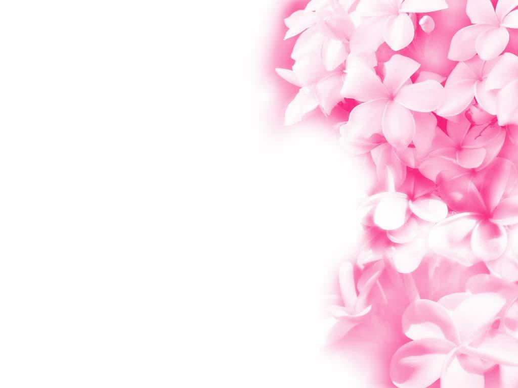 beautiful pink wallpaper 26682