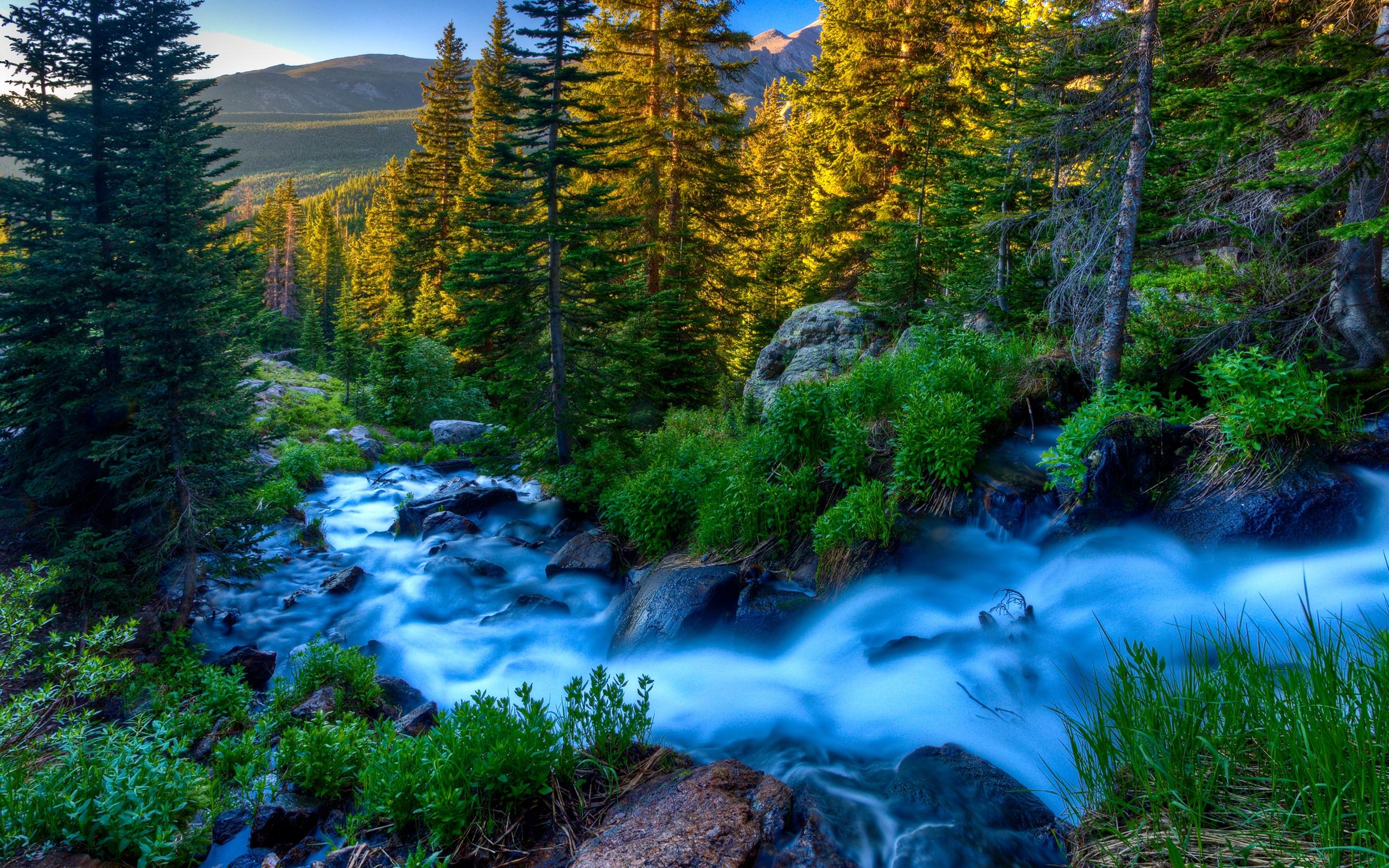 beautiful stream 31757