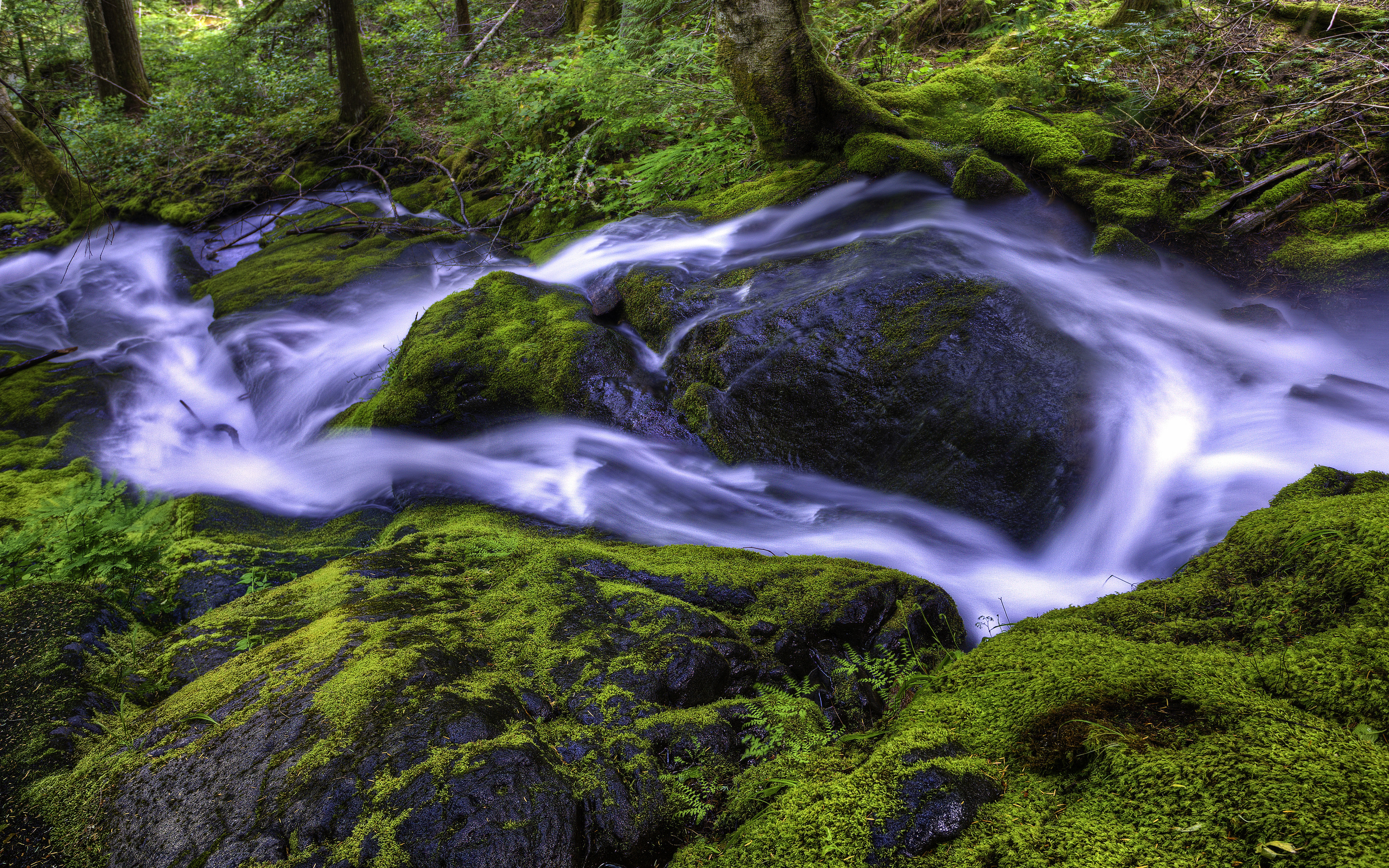 beautiful stream wallpaper 31734