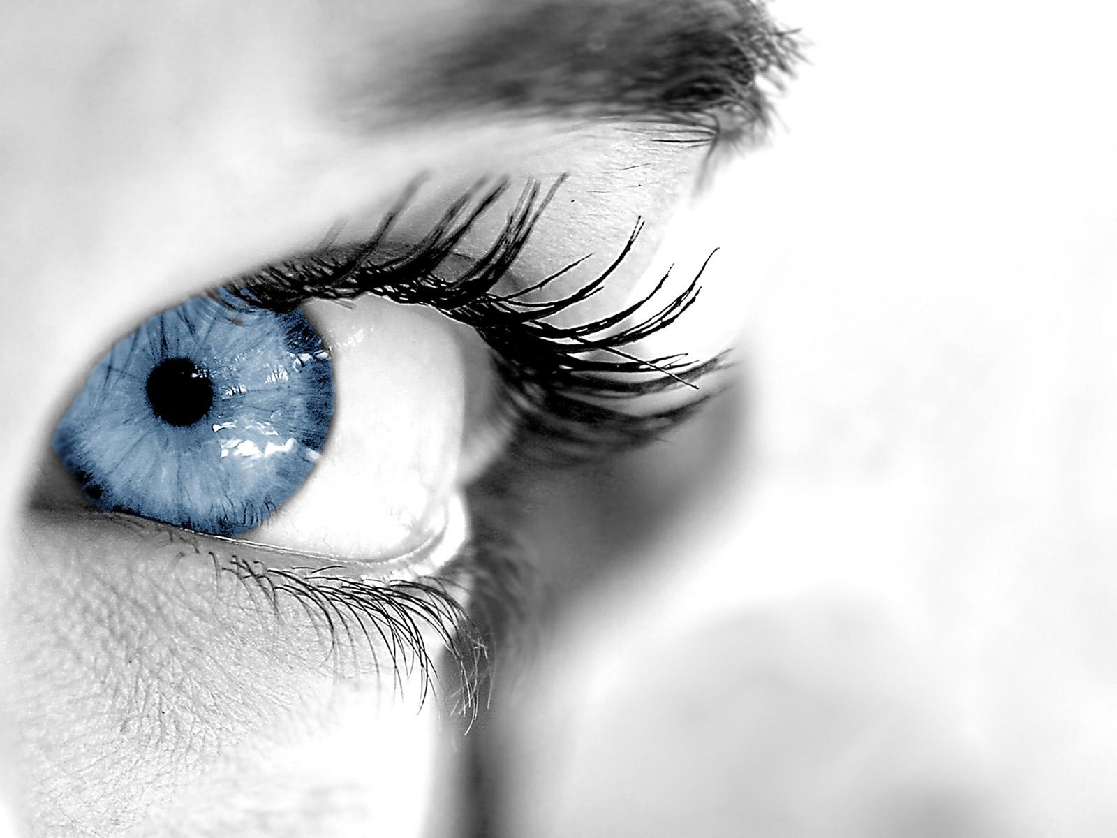 blue eyes wallpaper 28558 1600x1200px