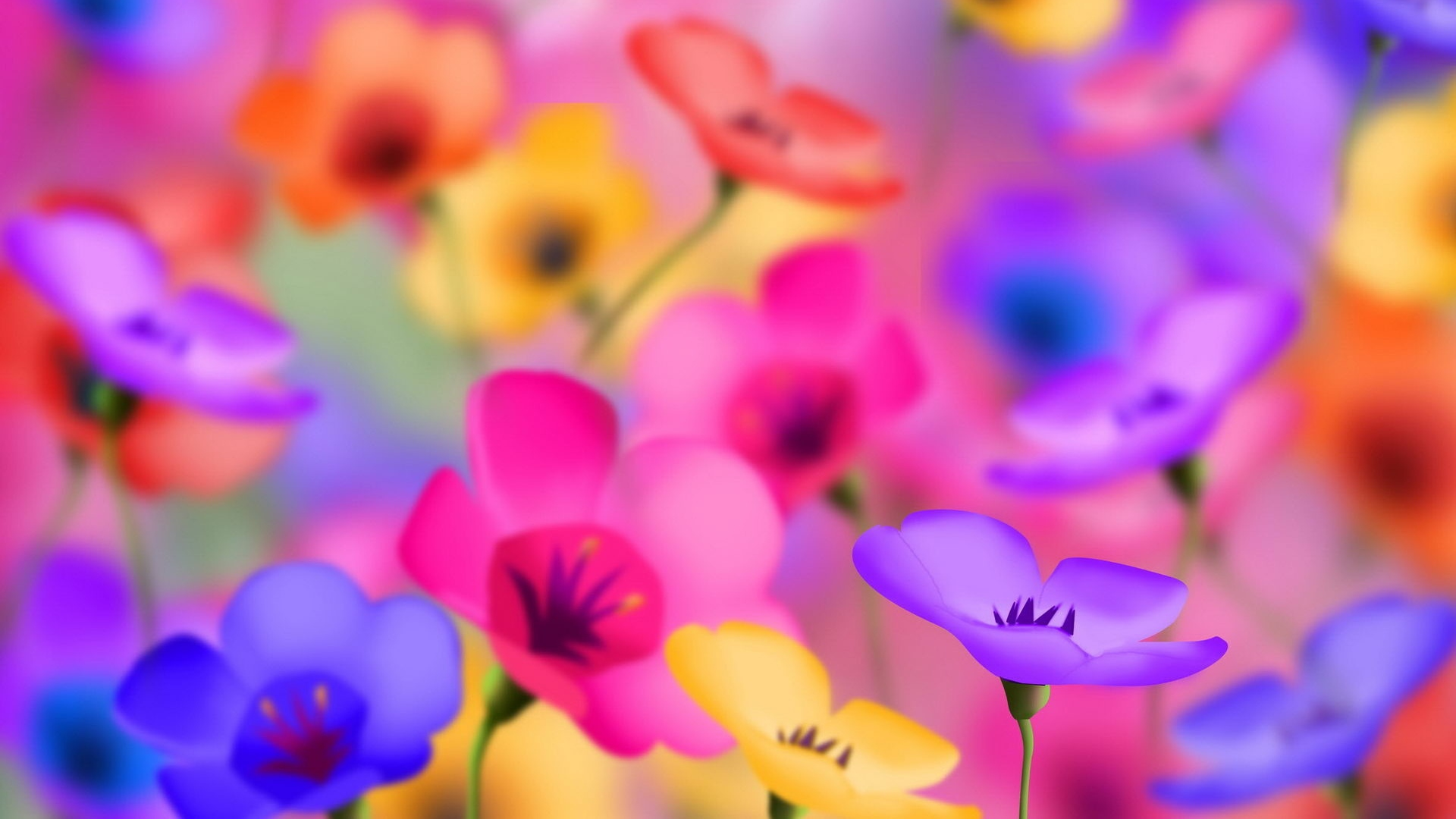 Color Flower Wallpaper