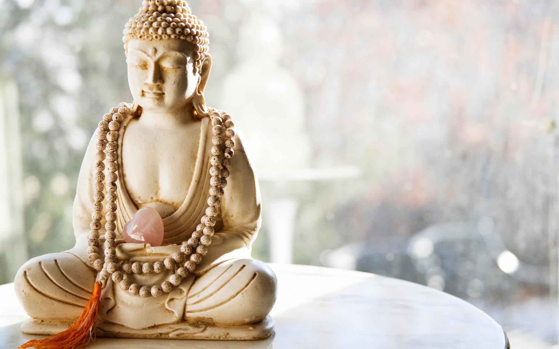 buddha 25611