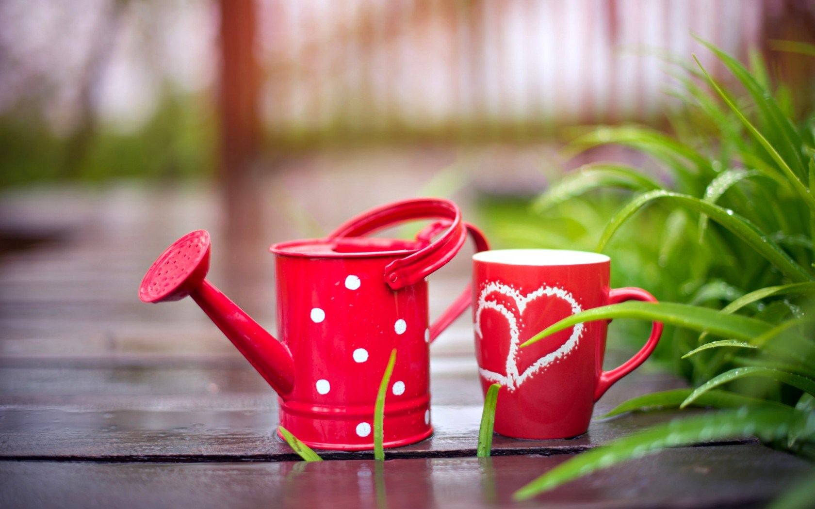 cute watering can wallpaper 43882