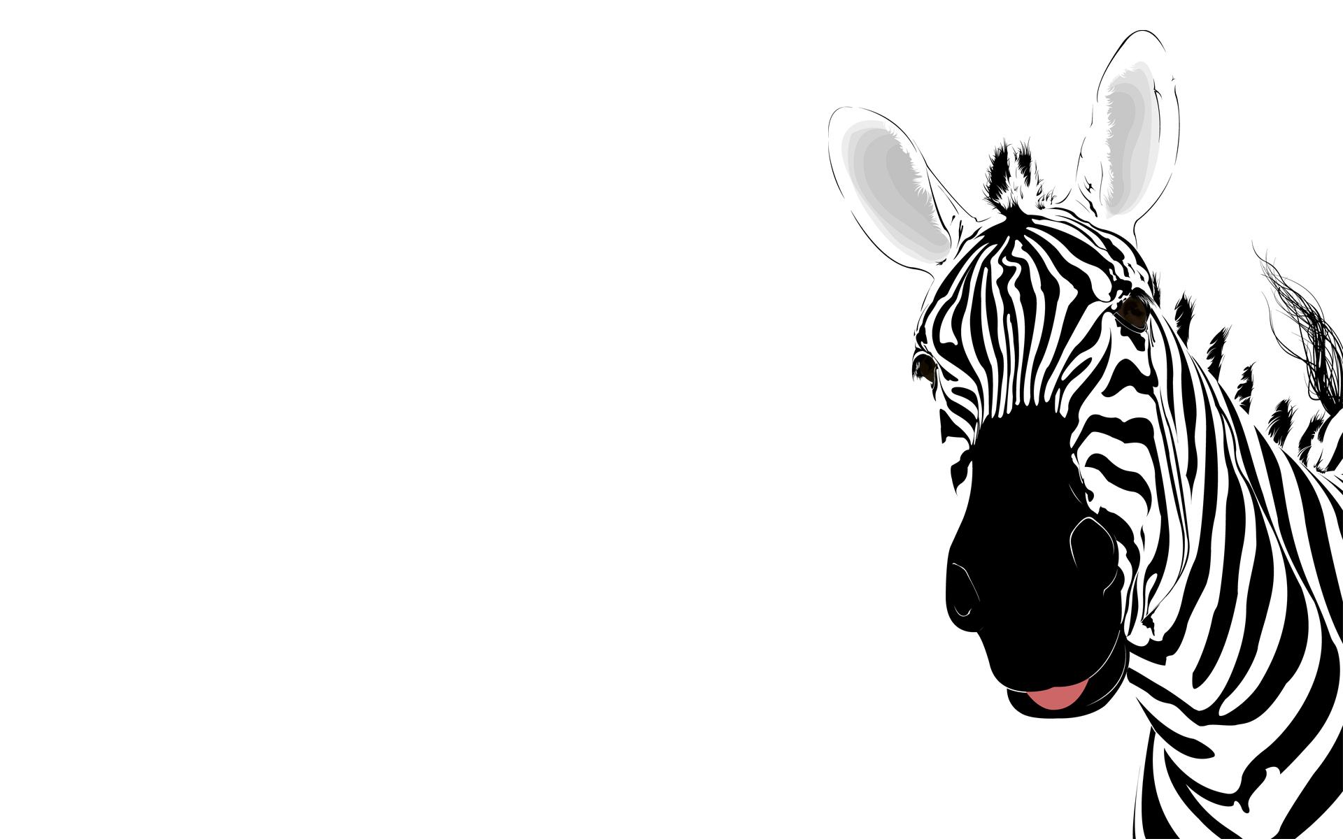 cute zebra background 18502
